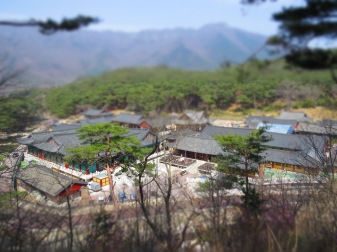 A look down onto the temple complex - taken using the miniature model option on the camera.
