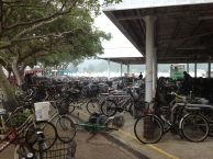 At the ferry terminal at Mui Wo, Launtau.
