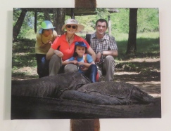 Had to take out Komodo dragon picture with us.