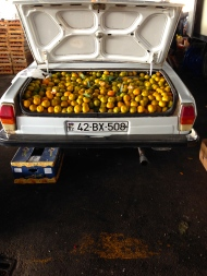 Bulk selling out the back of a Lada